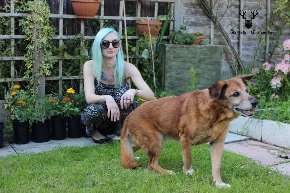 blogger with dog, blue hair, summer